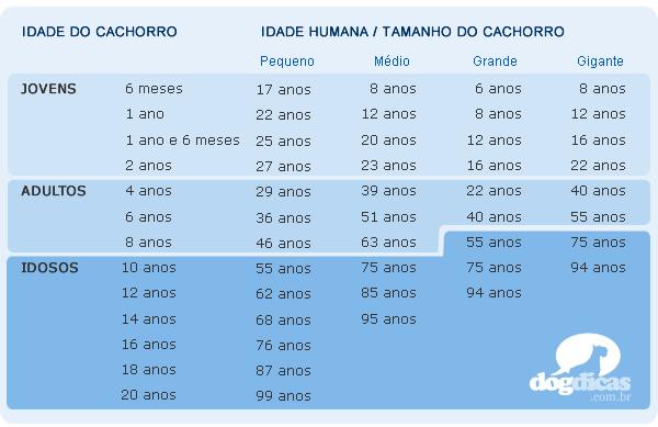 Tabela de equivalência entre cães e humanos